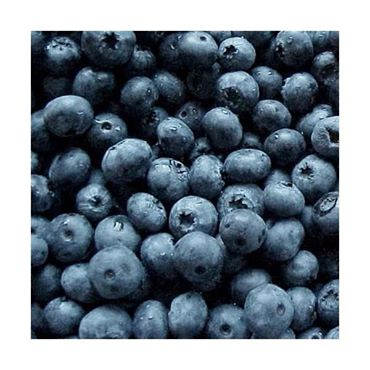 Blueberries... Everyday!